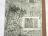 Packwood House Garden detailed drawing by Louise Claire